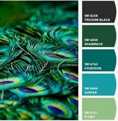 Peacock palette with Sherwin-Williams colors, i love it by katheryn - Ente And Gans Peacock Bathroom, Peacock Room, Peacock Decor, Peacock Dining Room, Bathroom Colors, Peacock Color Scheme, Peacock Colors, Colour Schemes, Peacock Feathers