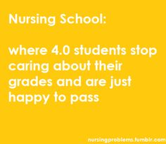 i think that this is any college student, not just nursing Nursing School Humor, Nursing Career, Nursing Tips, Nursing Schools, Nursing Programs, Nursing Memes, Medical Humor, Nurse Humor, Rn Humor