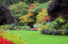 Butchart Gardens - Spring in the Sunken Garden   BC Vancouver ... on garden designs zone 7, garden designs zone 6, garden designs zone 3,
