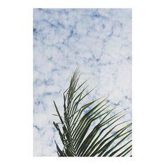 HEY HI HELLO  #tropicalvibes #sonyalpha #indonesia_greatshots...