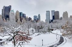 winter in NY.. can't wait!!!!