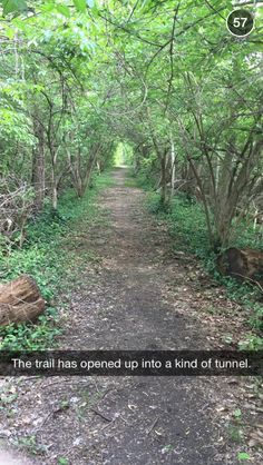 John Green Used Snapchat To Document His Walk Along the White River in Indianaplis and Tell A Beautiful Story About Love | BuzzFeed