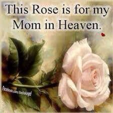 A Rose for my Mom in Heaven