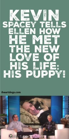 Kevin Space Tells Ellen How He Met The New Love Of His Life: His Puppy!! <3