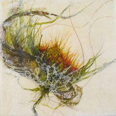 8-Garden2-72 - Alicia Tormey #watercolor jd