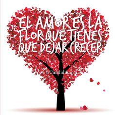 """""""El Amor es la Flor que tienes que dejar crecer"""" ❤️"""