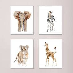 Set of 4 Safari Nursery Prints, Baby Animal Portraits - Elephant, Giraffe, Lion and Zebra - Various Sizes. Set of 4 Safari Nursery prints of Baby Safari Animal portraits taken from my original watercolors. Includes a baby elephant, baby giraffe, baby lion and baby zebra. QUALITY: Safari Nursery prints printed with highest quality archival inks and fine art papers to ensure print set will last and be enjoyed for years to come. DETAILS: Choose 5x7, 8.5x11, 11x14, 13x19, 16x20 or 18x24…