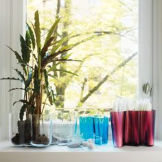 Vases by Iittalia