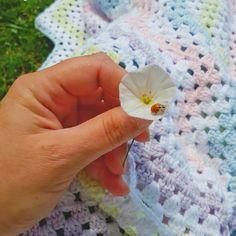 """@gulay_degirmenci: """"Umut...hep var🐞"""" Blanket, Crochet, Ganchillo, Blankets, Cover, Crocheting, Comforters, Knits, Chrochet"""
