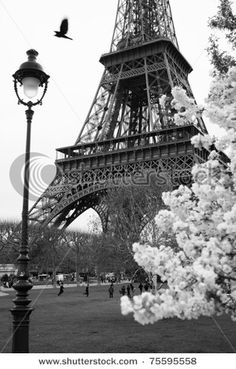 Sometimes Paris Is Just More Beautiful In Black And White