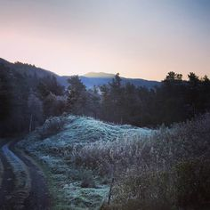 Cold mornings  #october #norway #landscape #belowfreezing #cold