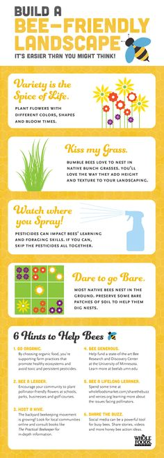 Building a bee-friendly landscape is easier (and more important) than you think! - ph