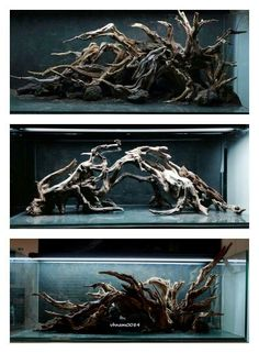Aesthetically pleasing natural wood for vivariums or aquariums