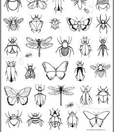 220 En Iyi Kelebek Goruntusu 2020 Kelebekler Desenler Ve Cizim