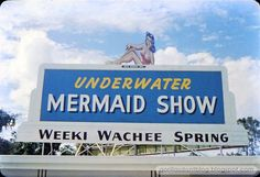 "Weeki Wachee Springs (in Weeki Wachee, Florida) has been the home to famous underwater ""mermaid"" shows since Unlike some other classi. Florida Springs, Weeki Wachee Florida, Florida Oranges, Vintage Florida, Central Florida, Underwater, Mermaid, Signs, Bucket"