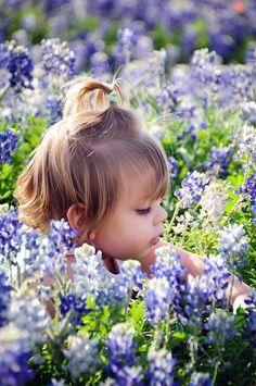 in the fields of wonder