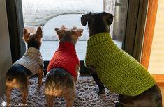 Crochet Dog Sweater Free Pattern, Crochet Dog Patterns, Crochet Stitches, Sweater Patterns, Dress Patterns, Stitch Patterns, Knitting Patterns, Easy Crochet, Free Crochet