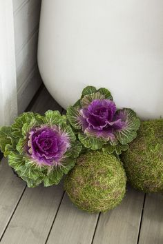 En blomstrende sensommer Container Gardening, Succulents, Floral Wreath, Wreaths, Outdoor Stuff, Front Porch, Yard, Gardens, Pink