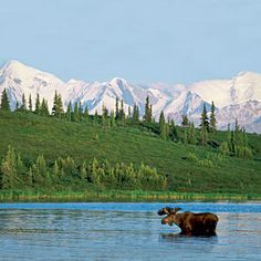 Dream Destinations: Alaska