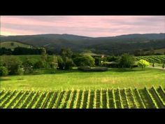 Yarra Valley and the Dandenong Ranges, Victoria, Australia - YouTube