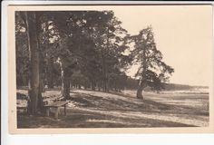 VÕSU rand (Parikas) s.~1930s