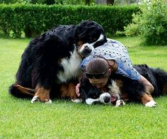 Group hug...☺️