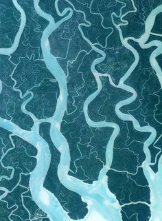 arial view of the Sundarban mangrove forest in India, the largest remaining mangrove forest on Earth