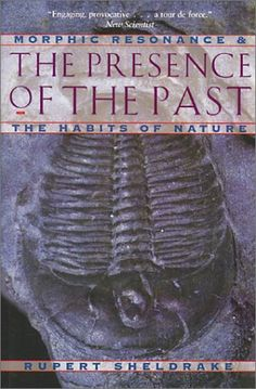 The Presence of the Past: Morphic Resonance and the Habits of Nature by Rupert Sheldrake 9780892815371 Used Books, My Books, Rupert Sheldrake, Celestine Prophecy, New Scientist, Book Writer, New Thought, Reading Lists, Self Help