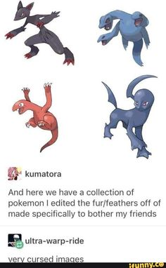 And here we have a collection of pokemon I edited the fur/feathers off of made specifically to bother my friends % ultra-warp-ride verv cursed imaqes – popular memes on the site iFunny.co Play Pokemon, Pokemon Comics, Pokemon Memes, Pokemon Funny, Pokemon Fan Art, Pokemon Fusion, Cute Pokemon, Pokemon Stuff, Pokemon Pictures