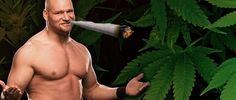 """During an interview with Inquisitr, former WWE Superstar Val Venis revealed that he turned to marijuana as a substitute for pain pills to help ease the pain of his nagging injuries. """"It's actually saved my life. I had six pins…"""