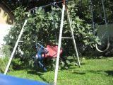 Moms Tree 1f