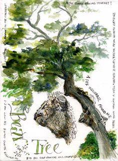 beautiful nature journal                                                                                                                                                     Mehr