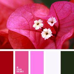carmesí vivo, color blanco sucio, color fucsia, color fucsia fuerte, color fucsia vivo, color rosa melocotón, colores verde y melocotón, combinación de colores para boda, frambuesa, matices de color rosado, matices de color rosado cálido, melocotón y rosado, melocotón y verde, paletas de