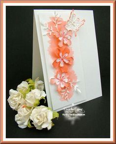 Splash of colour card ( peach) by Daizy-Mae - Cards and Paper Crafts at Splitcoaststampers
