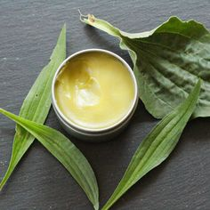 Herbs for Skin, Hair & Nails: Plantain & Herbal Drawing Salve via @nittygrittylife