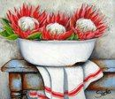 ♥ Stella Bruwer South Africa white enamel basin red and white protea white towel with red stripe on rusty blue table Protea Art, Bull Painting, Fabric Painting, Decoupage Vintage, Watercolor Flowers, Watercolor Art, Stella Art, Painting Lessons, Painting Inspiration