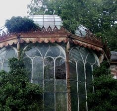 steampunktendencies:  Abandoned Greenhouse