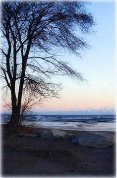 """Early Spring Along Lake Michigan"" by Kay Novy   http://fineartamerica.com/featured/early-spring-along-lake-michigan-kay-novy.html?newartwork=true"
