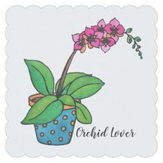 Watercolor Orchid Plant In Beautiful Pot Paper Coaster - holidays diy custom design cyo holiday family