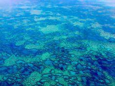 #greatbarrierreef #coralsea #australia #march2016 by damiencrosse_official http://ift.tt/1UokkV2