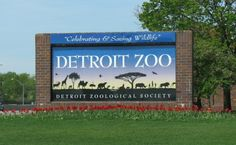It's time to run wild at the Detroit Zoo and raise dollars to keep the animals healthy