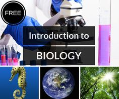Whether you're a new Biology teacher or have years of experience, this FREE product is for you. Includes PowerPoint, Notes, and Videos for the first chapter in high school Biology.