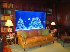 idées étonnantes pour vous aider à décorer votre chambre avec un aquarium