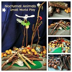 Exploring Nocturnal Animals, Autumn & Hibernation with this Small World Play Scene.