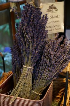 Red Ridge Farms   lavender   nursery   joodyjoods.com