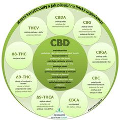 work with to much text Natural Treatments, Natural Health, Cannabis, Cantaloupe, Fruit, Food, Ganja, Hoods, Meals