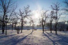 Много снежна зима | Дружба (квартал на София) - Фотоблог