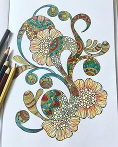Warm colors #colorful #colors #coloring #coloringbook #colorpencils #watercolorpencils #watercolorpainting #colleencoloredpencils #kuelox #coloringflowers #adultcoloring #adultcoloringbook #valentinaharper #coloringaddict #colortherapy #instacoloring #warmcolors