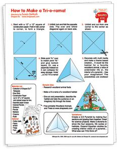 Create a Woodland Tri-o-Rama - Free Idea Sheet from Shapes Etc! Science Biology, Science Art, Science Projects, Projects For Kids, Teaching Second Grade, Third Grade, Owl Theme Classroom, Classroom Ideas, Ecosystems Projects