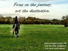 Where has your journey taken you? Share with us your stories and pictures of your horse on www.judgemyride.net